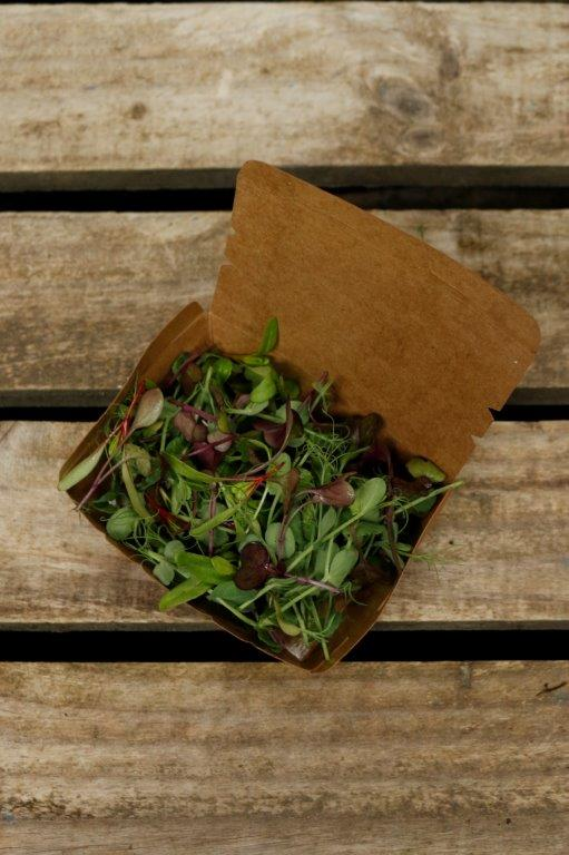 Microgreen Mix - Small