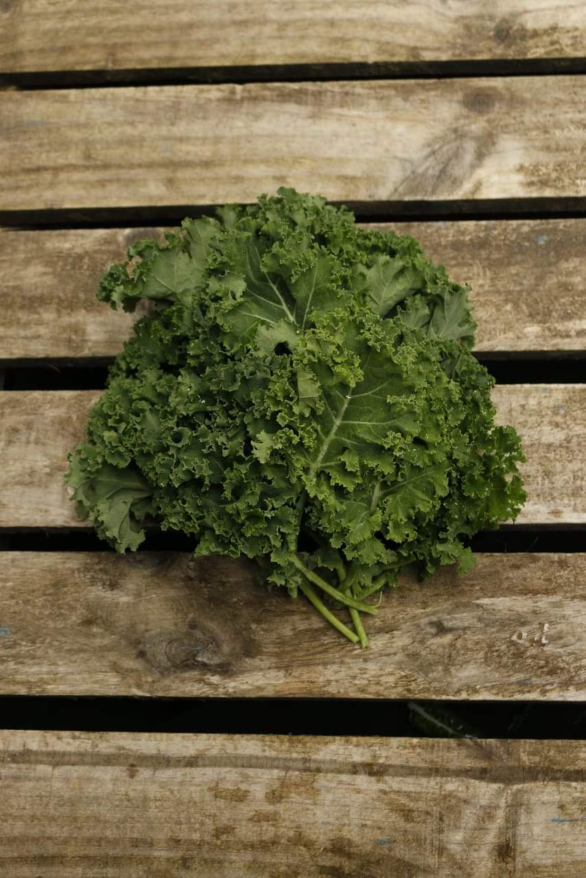 Kale - Curly, 1kg