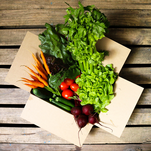 Medium Seasonal Produce Box